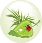 Sheet with ladybird. Spring concept — Stock Vector