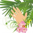 Womanish hand and branch of palm — Stock Vector #2787754