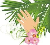 Womanish hand and branch of palm — Stock Vector