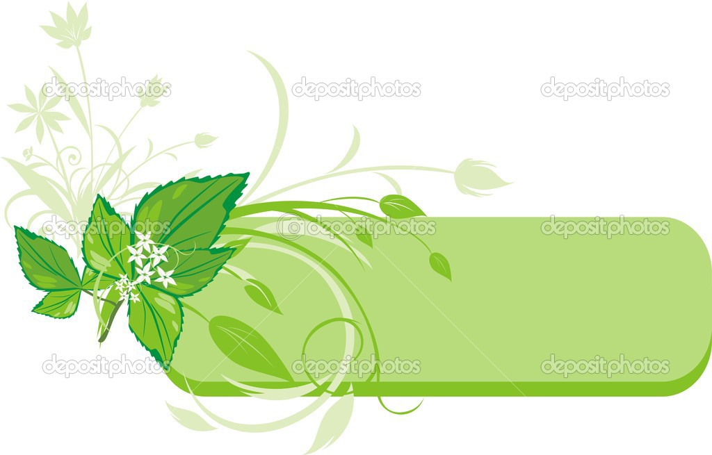 Mint sprig. Decorative banner. Vector illustration — Stock Vector #2788599
