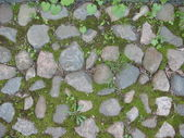 Stones and moss — Stock Photo