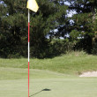 Golf play — Stock Photo #3607439