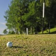 Golf ball on right way — Stock Photo #3499049