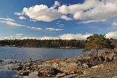 Bela paisagem de primavera da escandinávia — Foto Stock