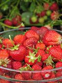 Saftig jordgubb frukt — Stockfoto