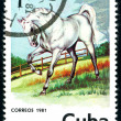 Postage stamp. Horse. - Stock Photo