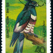 Postage stamp. Bird. - Stock Photo