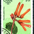 Postage stamp. Flower. - Stock Photo