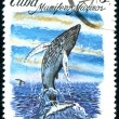 Postage stamp. Mamiferos Marinos. - Stock Photo