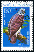 Postage stamp. Bird. — Stock Photo
