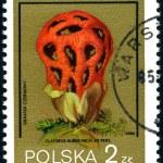 Polish postage stamp — Stock Photo #2749357