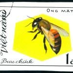 Vietnamese postage stamp — Stock Photo