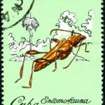 Cuban postage stamp — Stock Photo