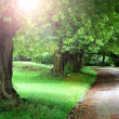 Stock Photo: Pathway
