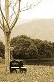 Sepia landscape — Stock Photo