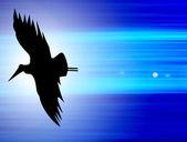 Ptak — Zdjęcie stockowe