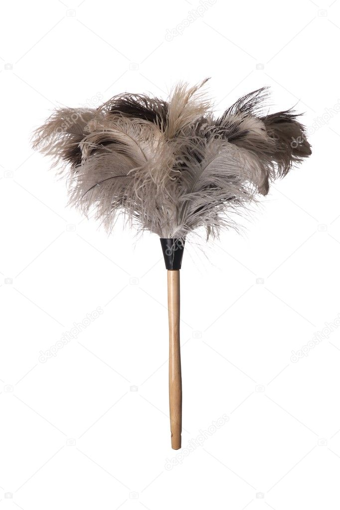 Gray ostrich feather duster with wooden handle on white background — Stock Photo #2804190