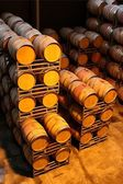 Wine Barrels or Vats — Stock Photo