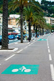 Marked bicycle path on a city street — Stock Photo