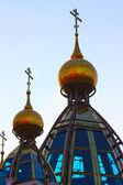 有趣的教会在基辅 — 图库照片