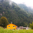 Small town Tplmin in the Alps taken in summer in Slovenia — Stockfoto