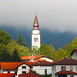 small town tplmin in the alps taken in summer in slovenia — Stock Photo