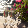 Wedding champagne glasses — Stock Photo #2917441