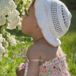 Stockfoto: Child enjoys scent of flowers