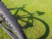 Bicycle — Stock Photo
