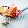 Candied rose petals — Stock Photo #2765217