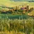 Tuscany landscape - belvedere — Stock Photo