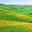 hilly landscape of tuscany — Stock Photo