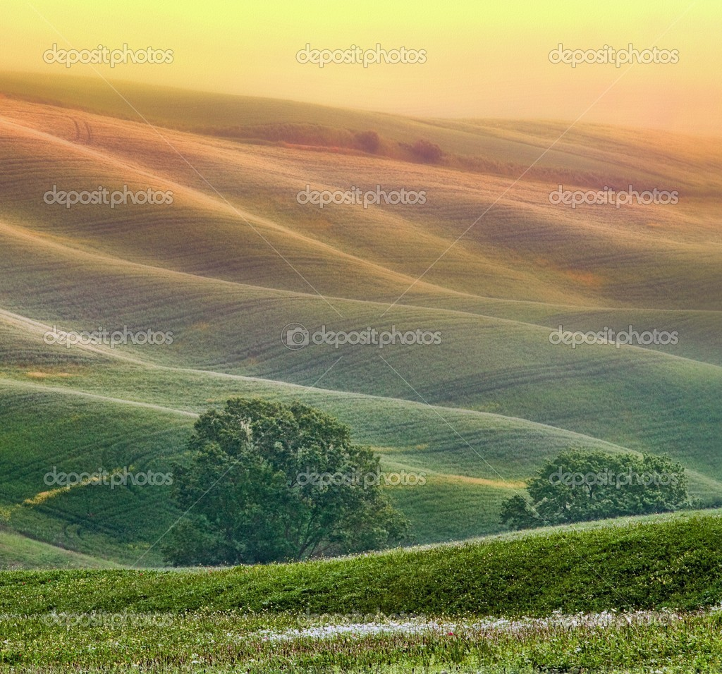 Rural countryside landscape in Tuscany region of Italy  Stock Photo #3555625