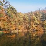 Beautiful atumn on pond — Stock Photo