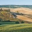 Tuscany summer landscape — Stock Photo #3823271