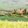 Stock Photo: Tuscany landscape - belvedere
