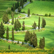 Tuscana Landscape - road serpentines — Stock Photo