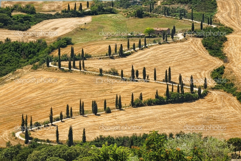 Beautiful landscape in Tuscany with sinuous road — Stock Photo #3823145