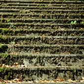 Fragmento escaleras — Foto de Stock
