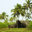 Fishing hut under the palm trees — Stok fotoğraf