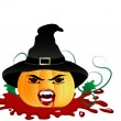 Pumpkin witch — Stock Vector #3847284