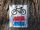 Bicycle track sign — Stock Photo