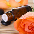 Stock Photo: Bottle of essential oil and rose