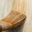 Painting wooden brush — Stock Photo