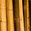 Bamboo — Stock Photo #2865702