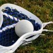 Stock Photo: Lacrosse head with ball
