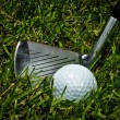 Golf club and ball on grass — Stock Photo