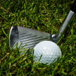 Golf club and ball on grass - Stock Photo
