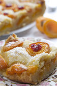 Apricot pie — Stock Photo