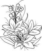 Bouquet — Stock Vector